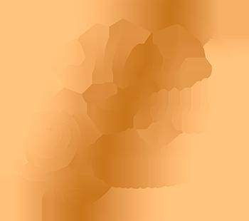 Maud Agnus